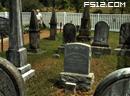 墓地找100个蜘蛛