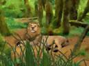 善良狮子逃出丛林
