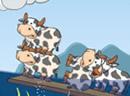 奶牛水上飘