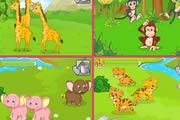 动物宝宝庇护所