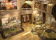 神秘博物馆找数字-用你的敏锐眼力,在神秘博物馆中找到所有隐..