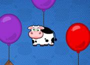 聪明可爱找奶牛