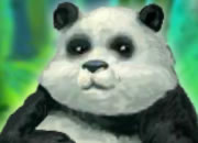 喂养一只肥熊猫
