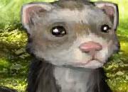 毛茸茸的鼬鼠
