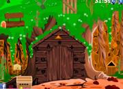 逃离丛林树屋