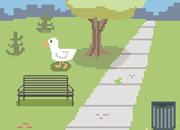 鸭子的奇遇
