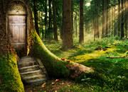 逃出魔法森林
