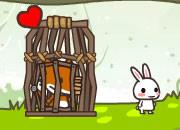 兔子和狼的爱情
