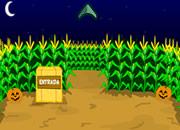 Hooda Escape Corn Maze