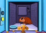 哄猴子开心:电梯间2