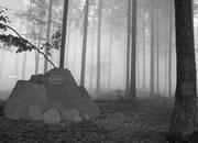 逃离迷雾丛林