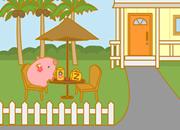 南岛公园小猪41
