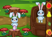 复活节兔兔赚彩蛋