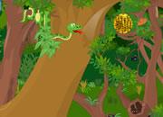 里约丛林救小鸟