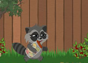 Raccoon'S Adventure