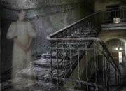 Vacant Asylum