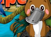 鸭嘴兽逃出丛林