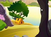 逃离丛林露营地