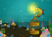 水下世界救小鱼