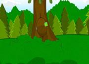 找火鸡逃出森林