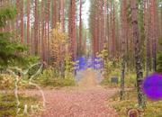 逃出秋季神秘森林4