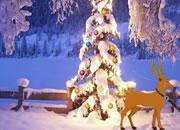 圣诞驯鹿被困记