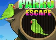 Parrot Escape