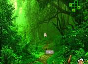 逃出天然绿色森林