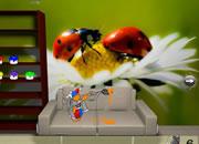 Jenna's Ladybug Escape