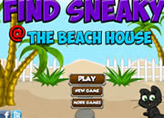 Find Sneaky Beach House