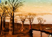 逃离非洲森林