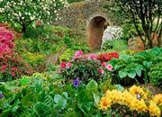 逃出花园-有一位奇花爱好者想要收集很多奇异的..