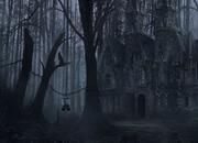 黑暗森林救出猫头鹰