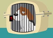 放出籠中的小狗2