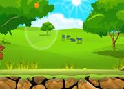 Green Field Escape