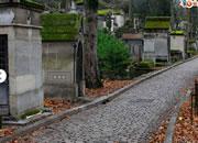 逃出巴黎墓地