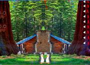 逃离深绿森林
