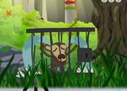 Rescue The Monkey