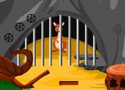 救袋鼠逃出山洞