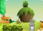 帮助兔兔逃离狐狸