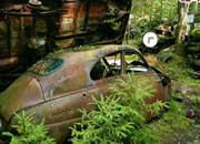 Bastnas Car Graveyard Escape
