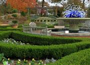 逃离亚特兰大植物园