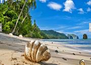 逃离奇异海滩