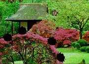 逃离季节性花园