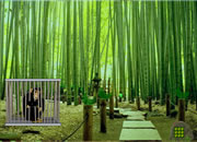 Bamboo Forest Monkey Escape