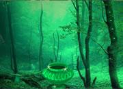 逃离灵幻森林