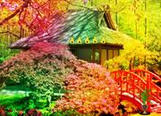 逃离漂亮的花园-