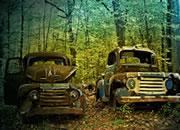 逃离废弃汽车坟墓