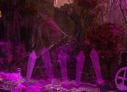 午夜紫色森林的秘密