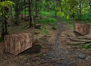红树林古船宝藏逃脱